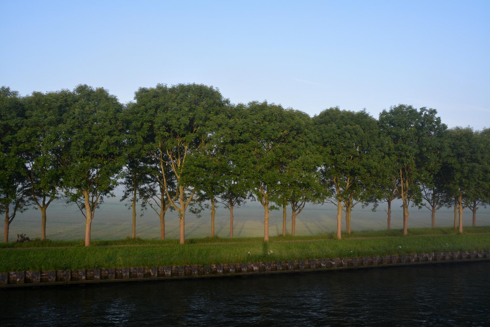 Uferblick am Morgen