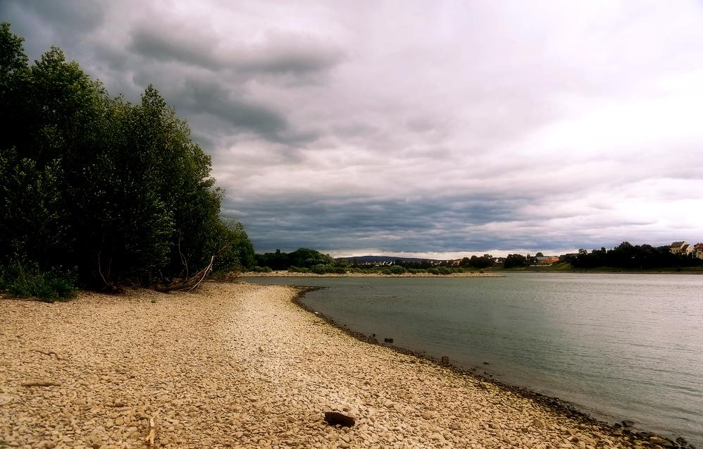 Uferlandschaft
