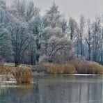 Uferlandschaften im Winter