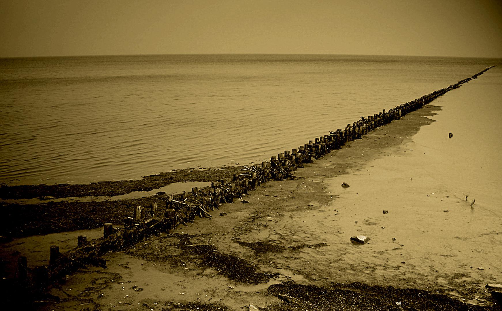 Uferschutz