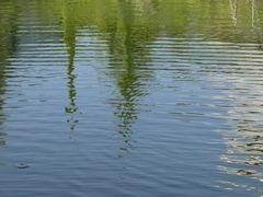 Uferspiegelung