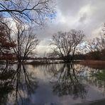 Uferwiese unter Wasser
