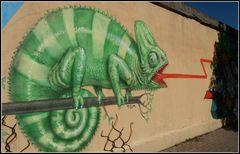 """Ugo""..il camaleonte!..."