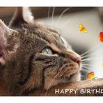 Uli hat Geburtstag