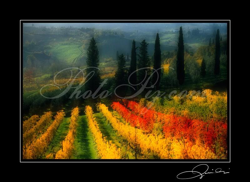 Ulignano - Tuscany 2000