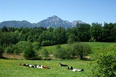 Ullrichshögl, Blick in die Berge