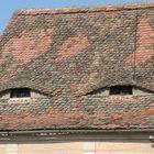 ulls o finestres?