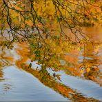 "Ulm - Friedrichsau - Donau - ""Wasser, Licht & Farbe"""