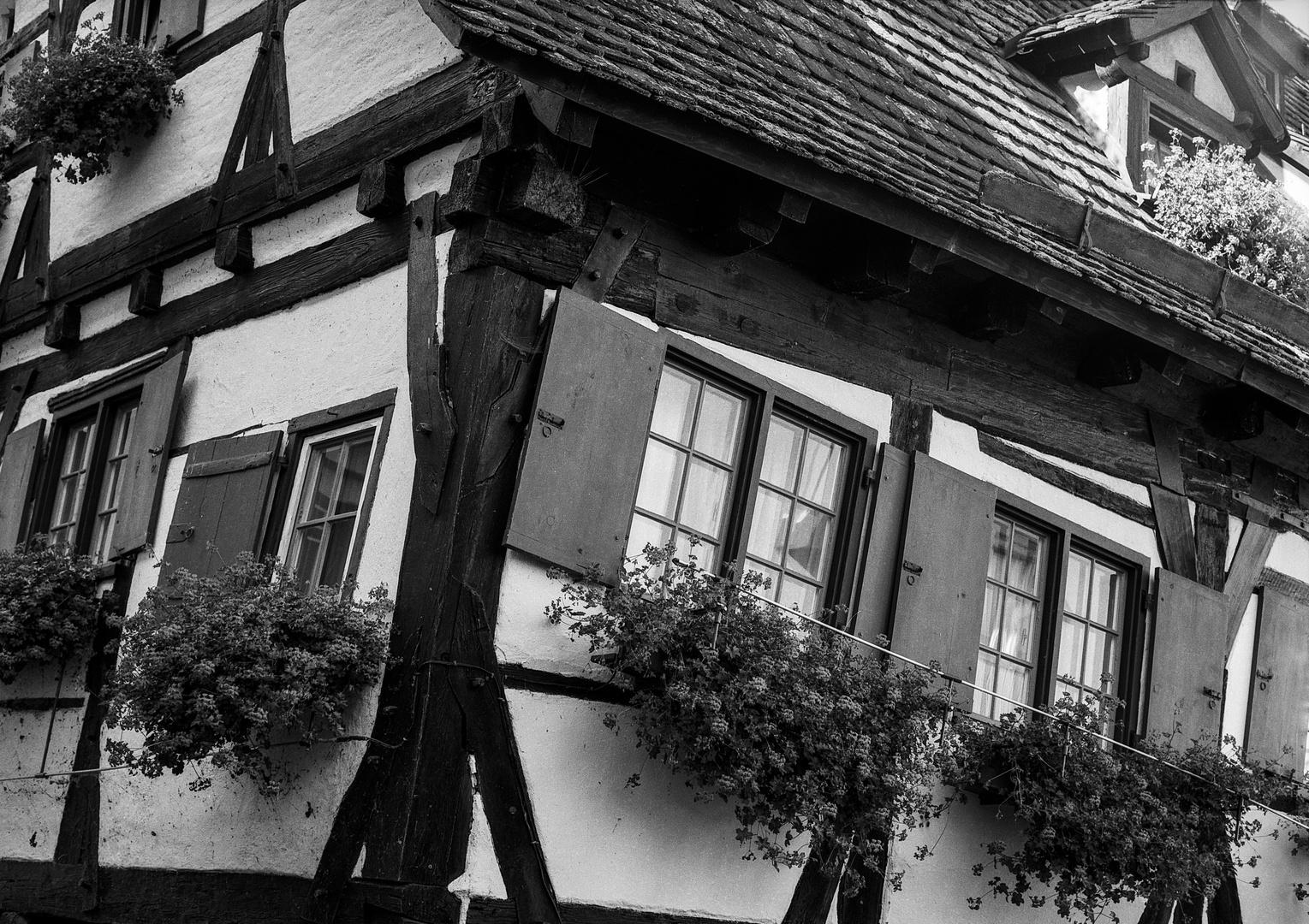 Ulmer Schiefhaus