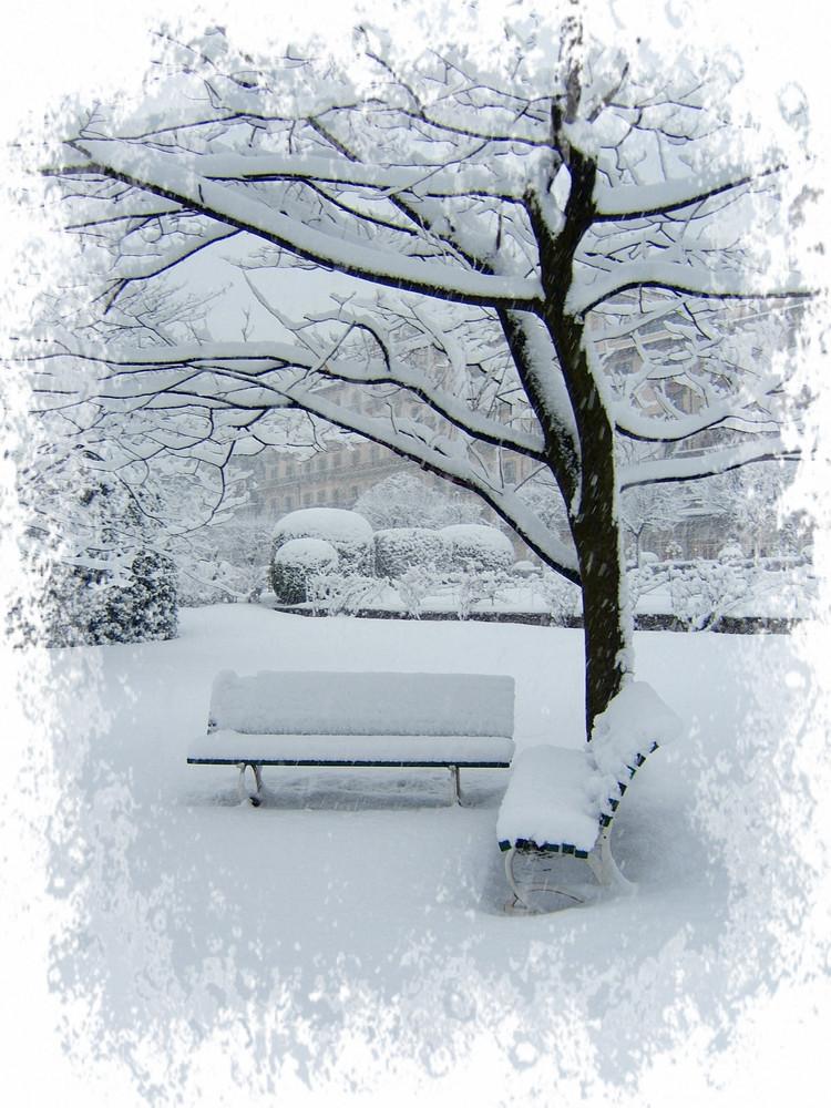 ultima neve ...