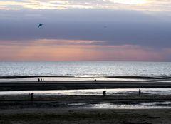 ultimes ébats sur la plage
