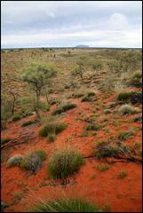 ULURU - from another point of view -