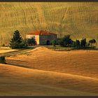 Umgebung von Montalcino-Toskana