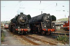 Umspannbahnhof Camburg 1981 volles Haus Dampf, Diesel und E- Traktion