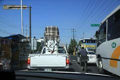 Umzugsunternehmen in Puebla