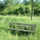 un banc perdu dans les herbes.