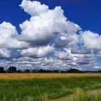 Un bel cielo