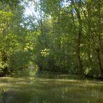 Un canal du Marais Poitevin