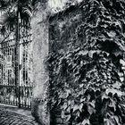 Un cancello di Caldè