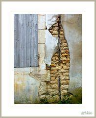 Un chat sur un mur