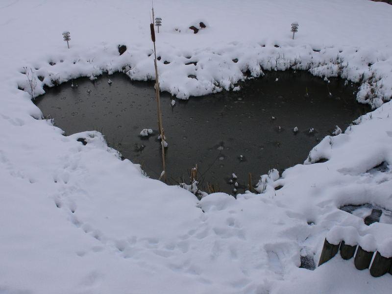 Un coeur dans la neige!