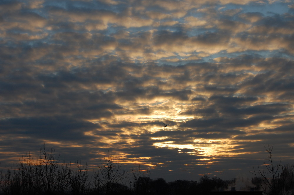 un début de coucher de soleil