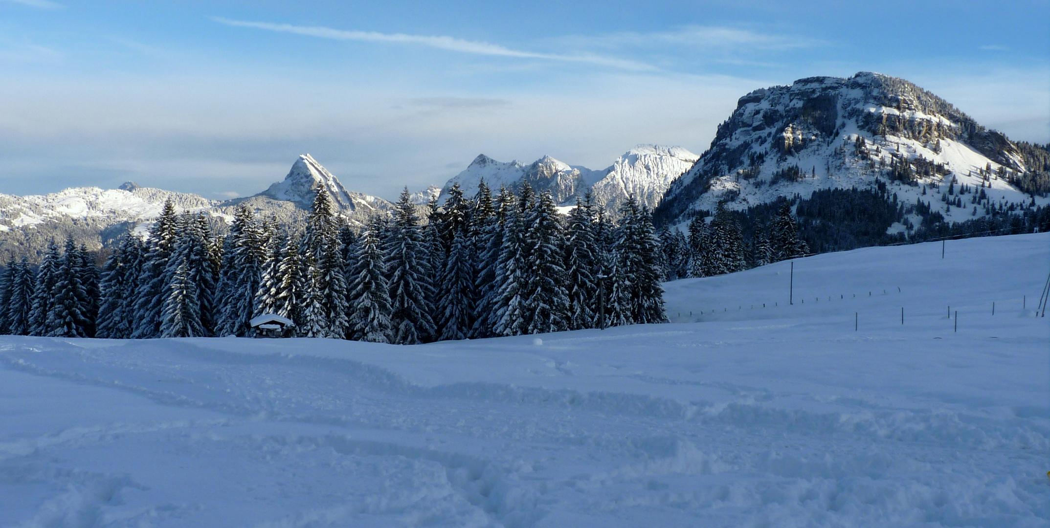 Un dia frio / une journée froide / Ein kalter Tag..02