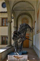 """un dinosaure de """" passage """"lors d une exposition"""