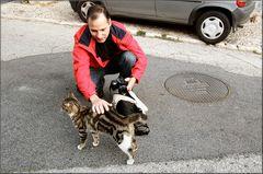 Un dolcissimo gatto trovato in via. One sweet cat found in street.