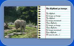UN ELEPHANT CA TROMPE !!!!!!