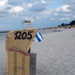 """Un """"été"""" au bord de la mer Baltique"""