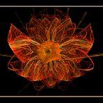 un fiore vero e uno inventato....