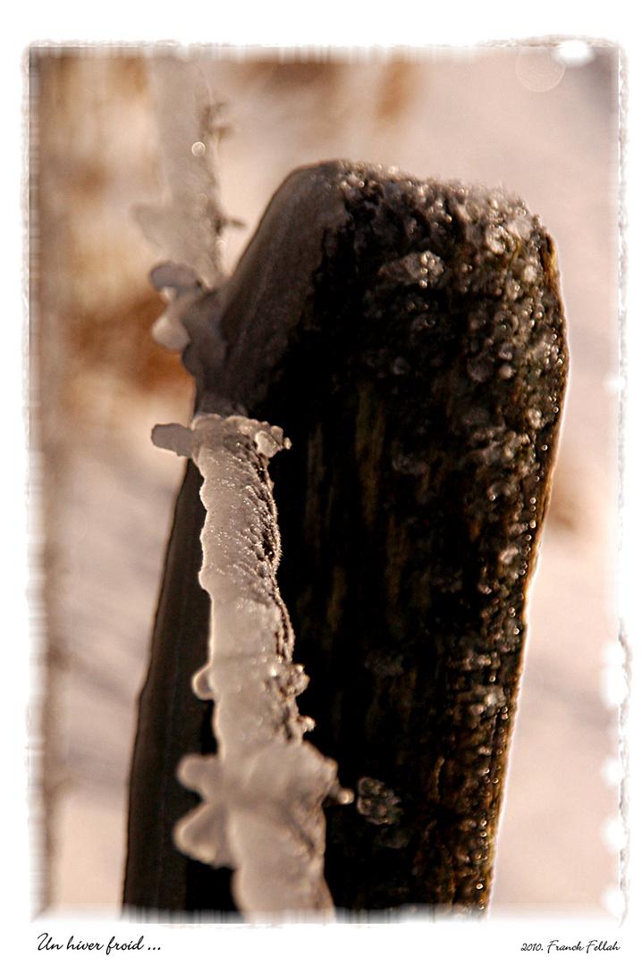 Un hiver froid.