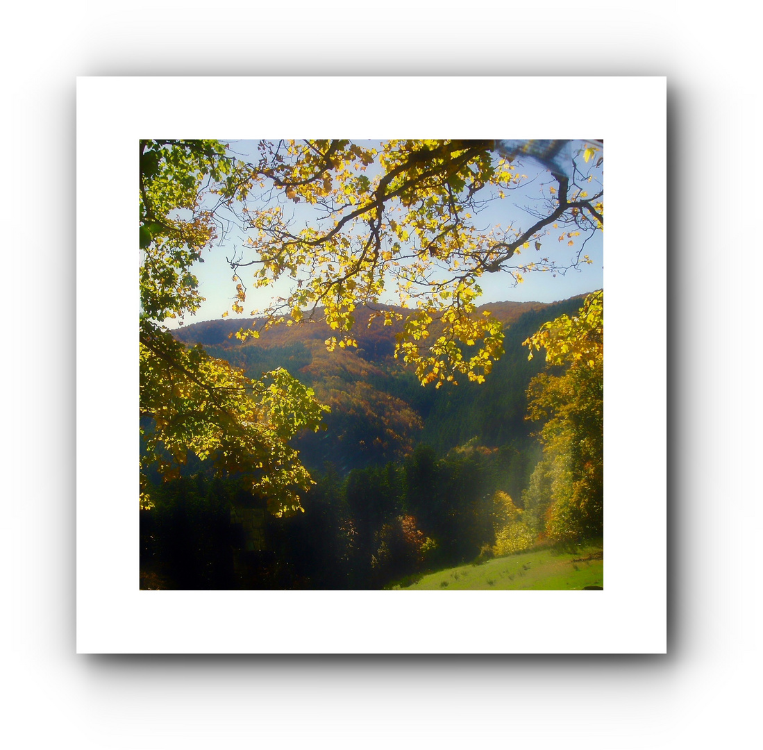 Un incantevole autunno