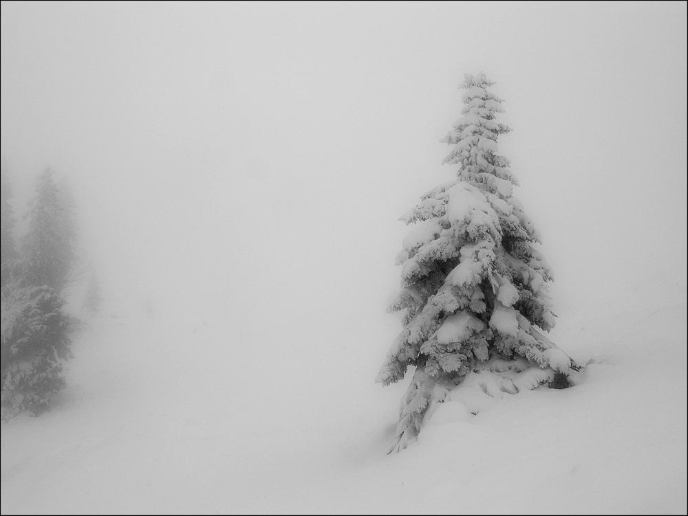 Un jour de neige ...