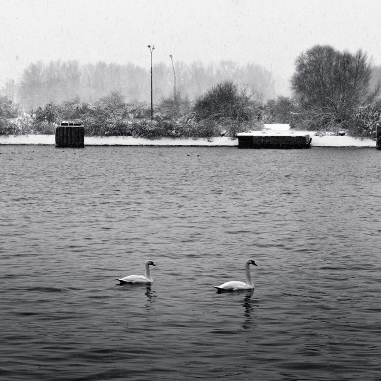 Un jour en hiver 2