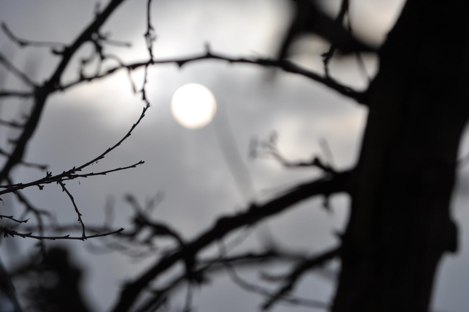 un jour, un moment, une ombre...