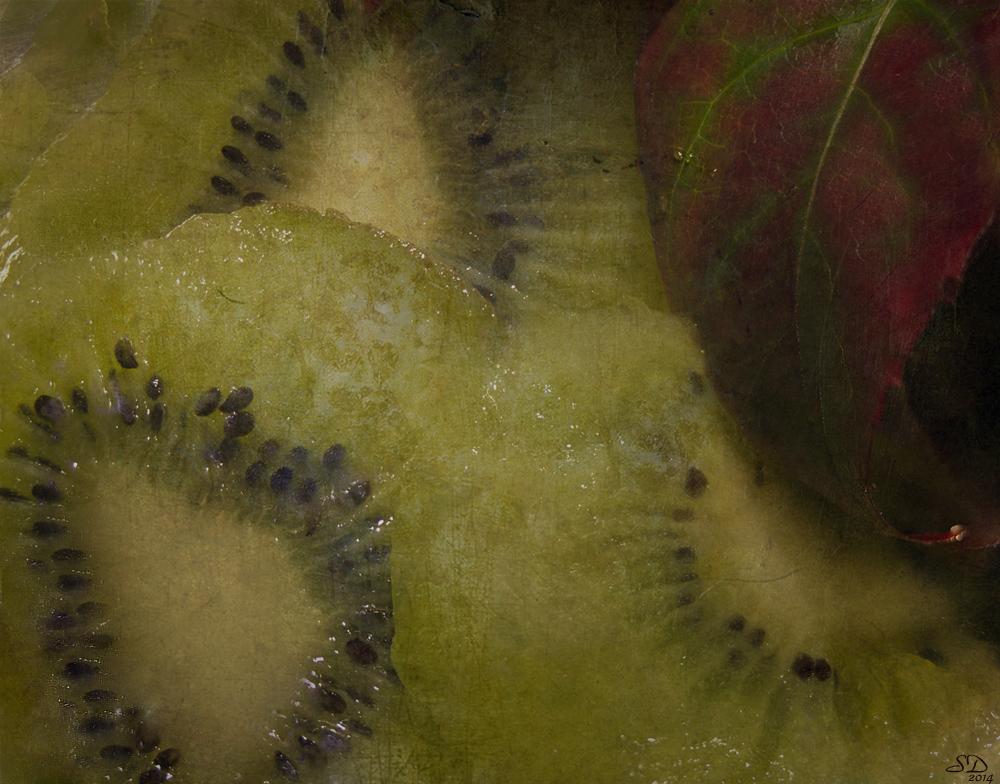Un kiwi en automne
