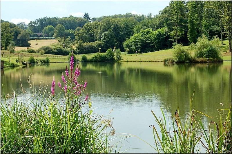 Un lac dans le Limousin !
