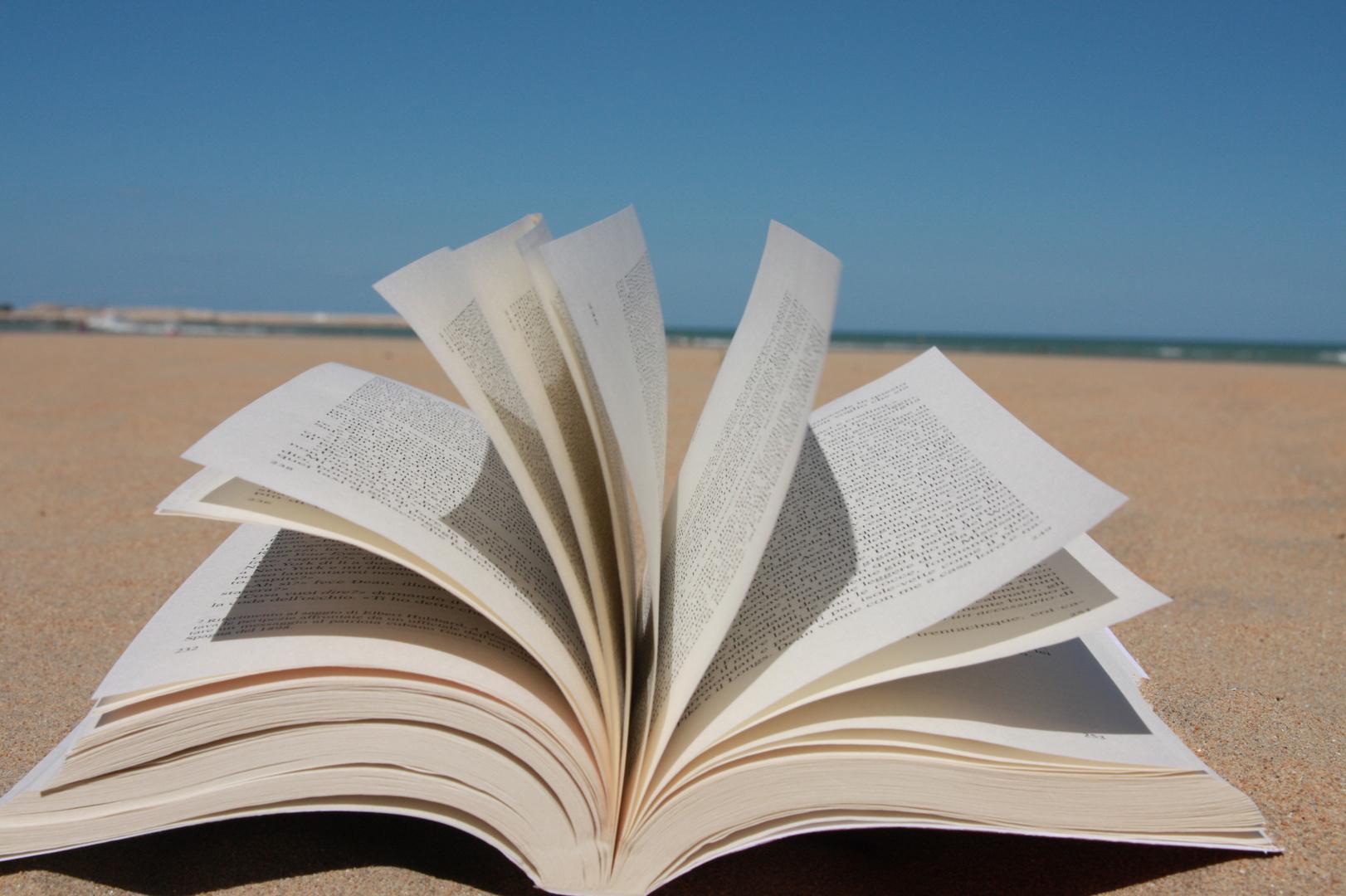 "un libro ""damare"""