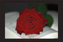 Un llibre i una rosa