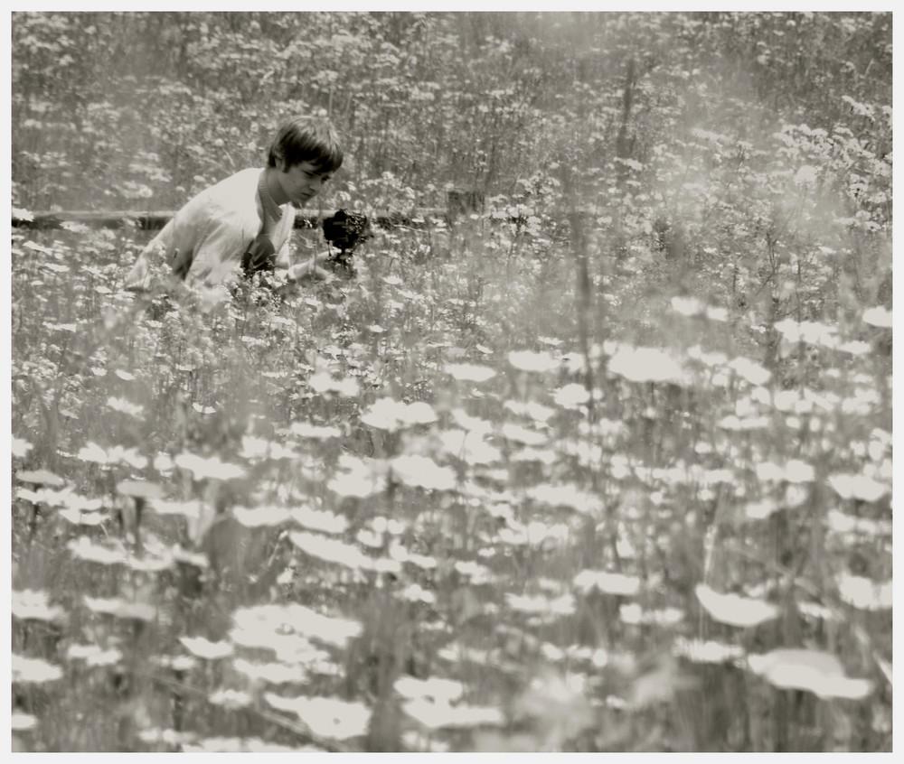 un mare di fiori