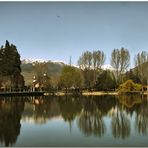 Un matí de primavera a l'estany I