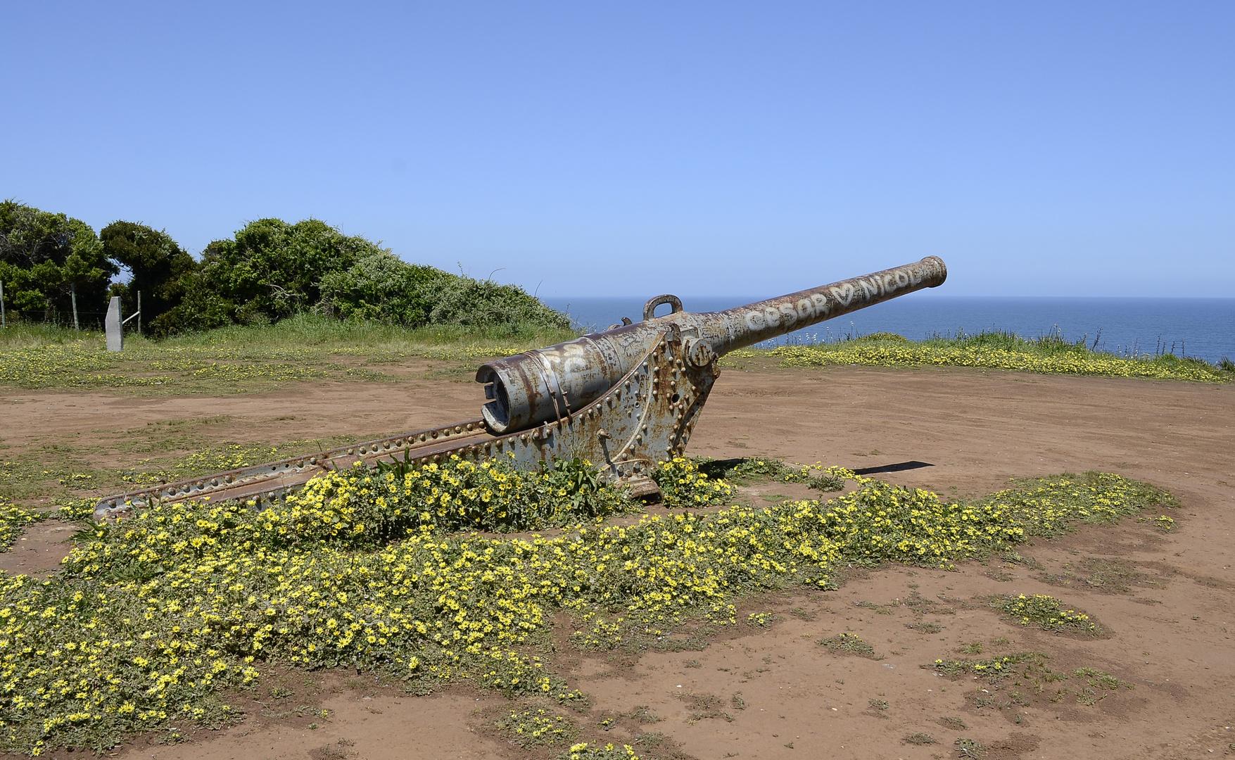 Un oxidado cañón naval de 155 mm en el sector Desembocadura del Río Biobío