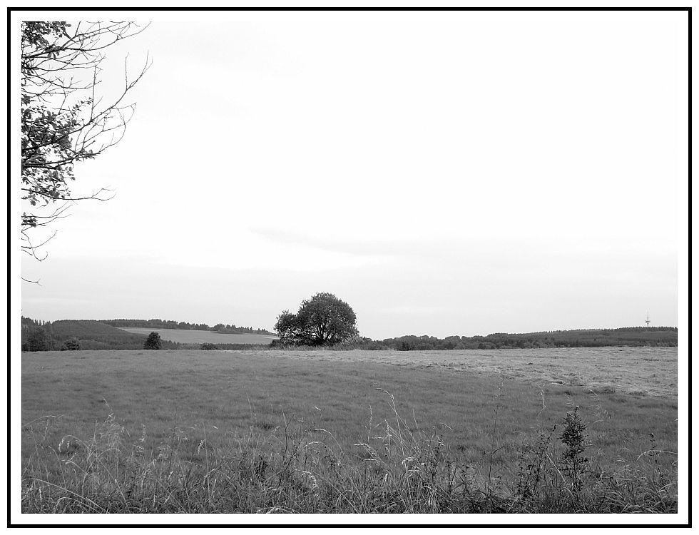 un paesaggio in germania