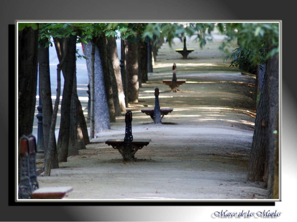 ...un pasito a pie y otro caminando....