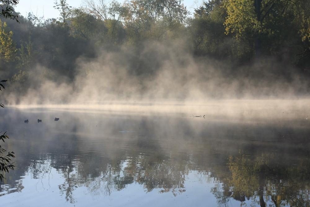 un petit matin d'automne
