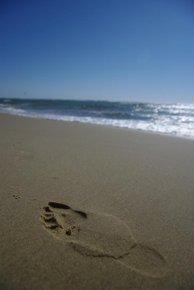 un petit pas pour l'homme ou un grand pas pour l'humanité???