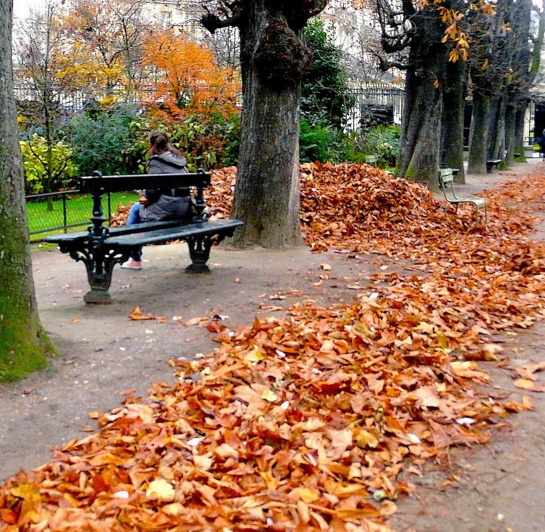 Un pré carré d'automne jalousement gardé