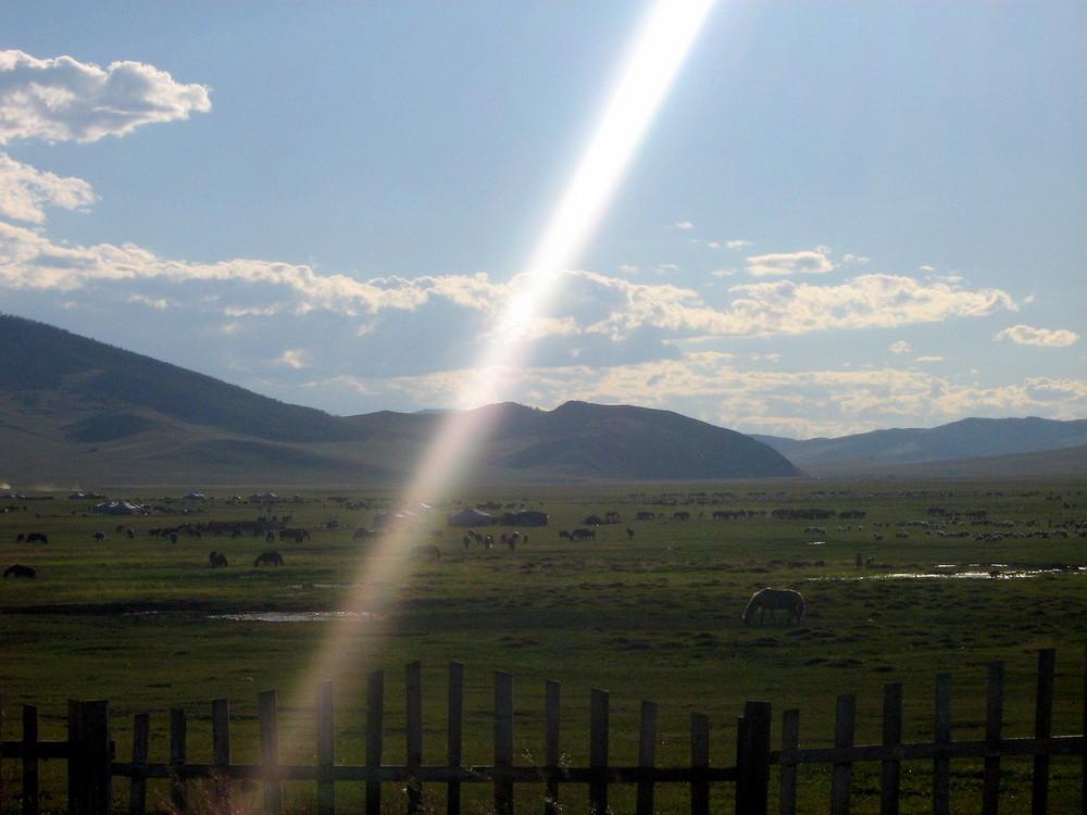 Un rayon de soleil en Mongolie . . .